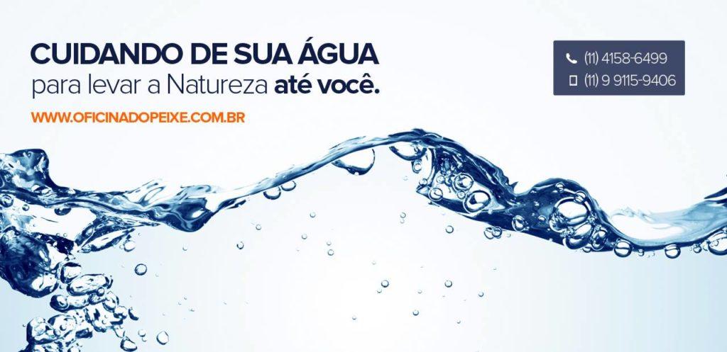lago ornamental é na www.oficinadopeixe.com.br